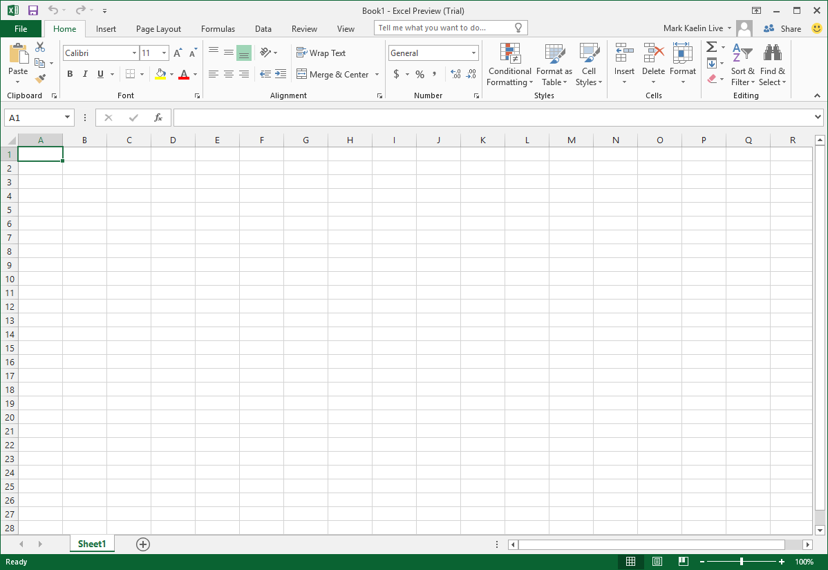 Microsoft Excel Screen Capture